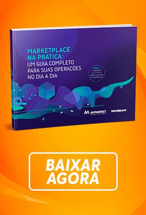 Marketplace na Prática: Um guia completo para suas operações no  dia a dia